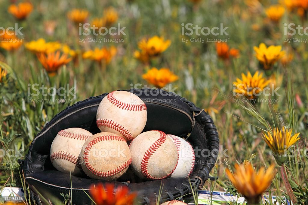 Seasonal sport stock photo