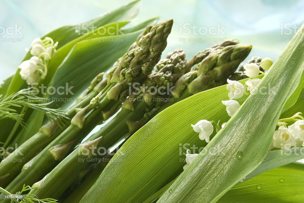 seasonal time for green asparagus and lily of the valley royalty-free stock photo