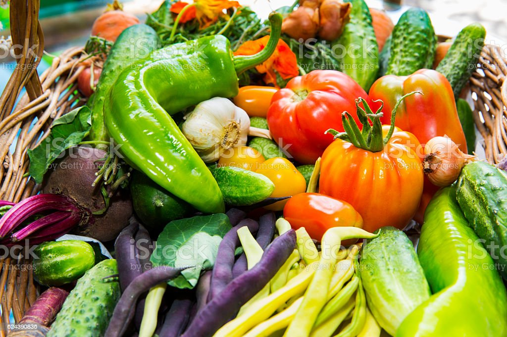 Seasonal vegetables in a basket stock photo