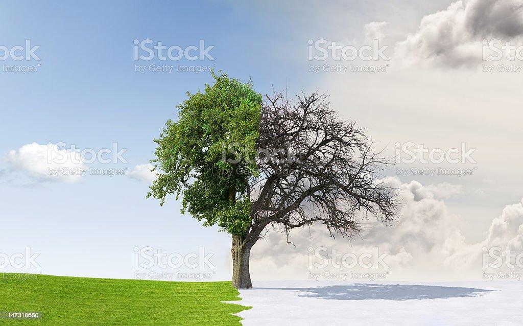Seasons change stock photo