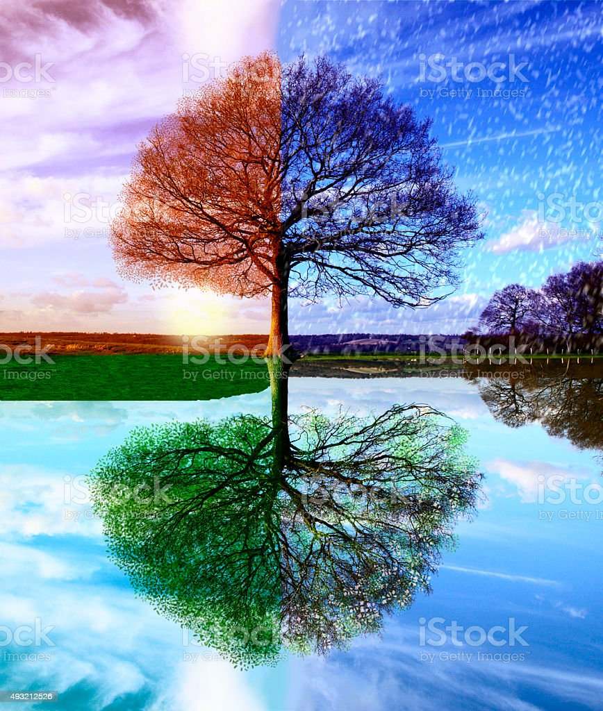 Seasons stock photo