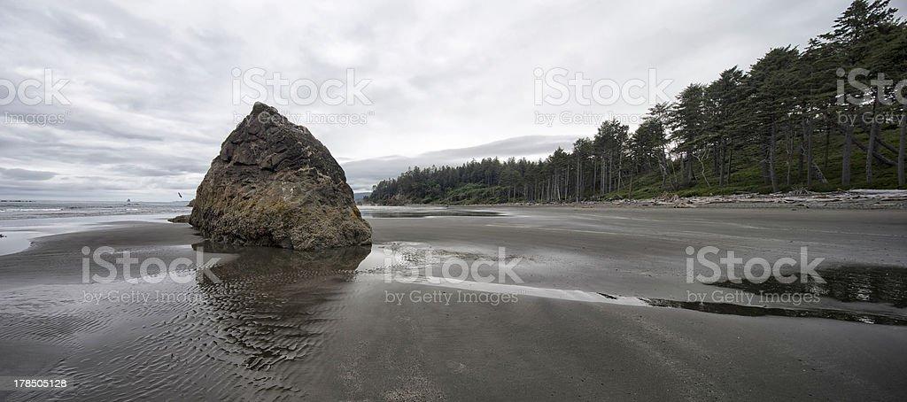 Seastack rock on Ruby Beach stock photo