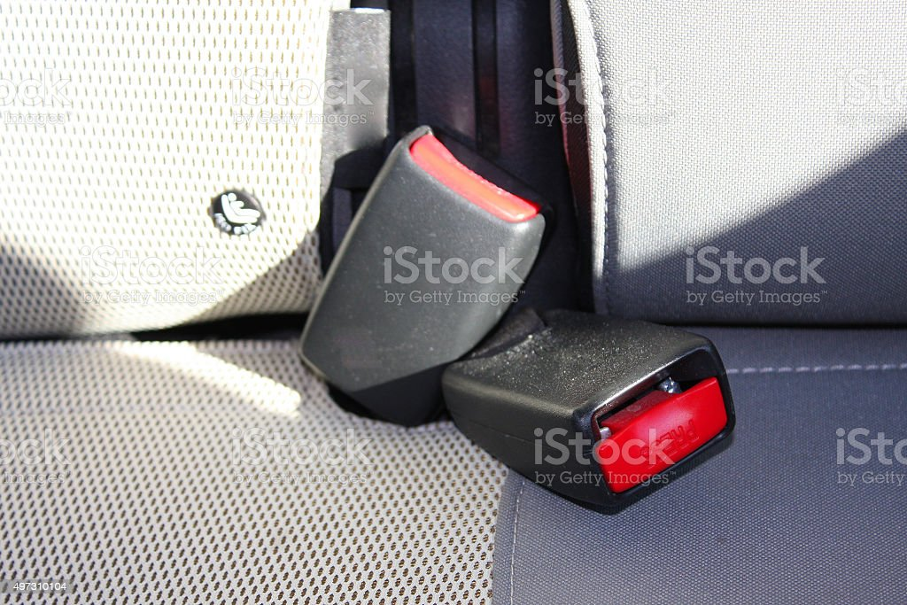 seat belt on a back seat in the car stock photo