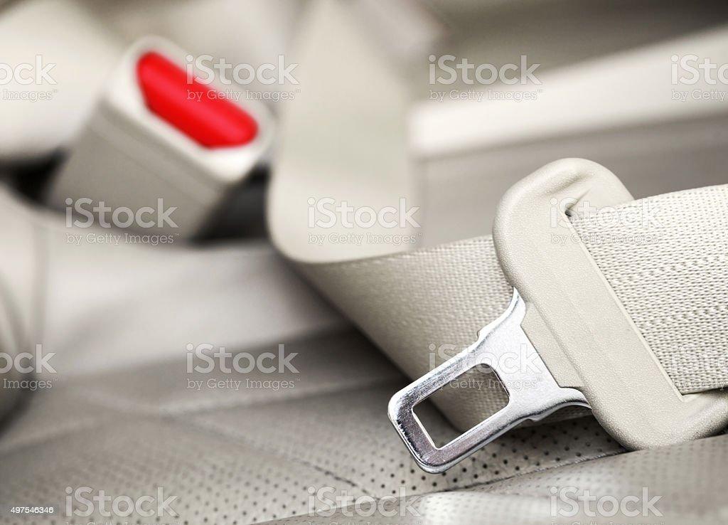 Seat Belt stock photo