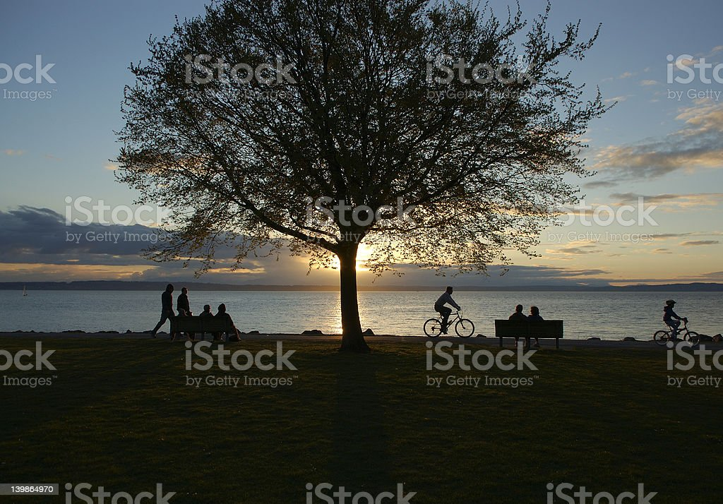 Seattle Beach Scene at Golden Gardens royalty-free stock photo