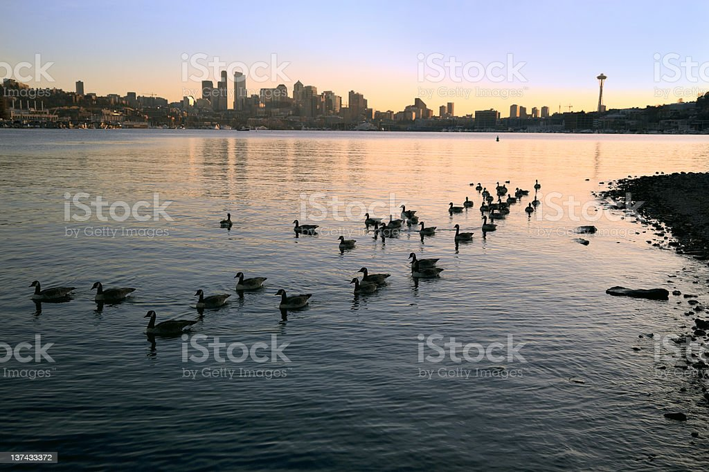 Seattle - Lake Union in Evening Light stock photo