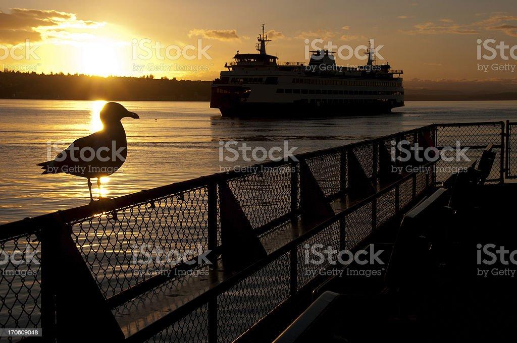 Seattle Waterfront royalty-free stock photo