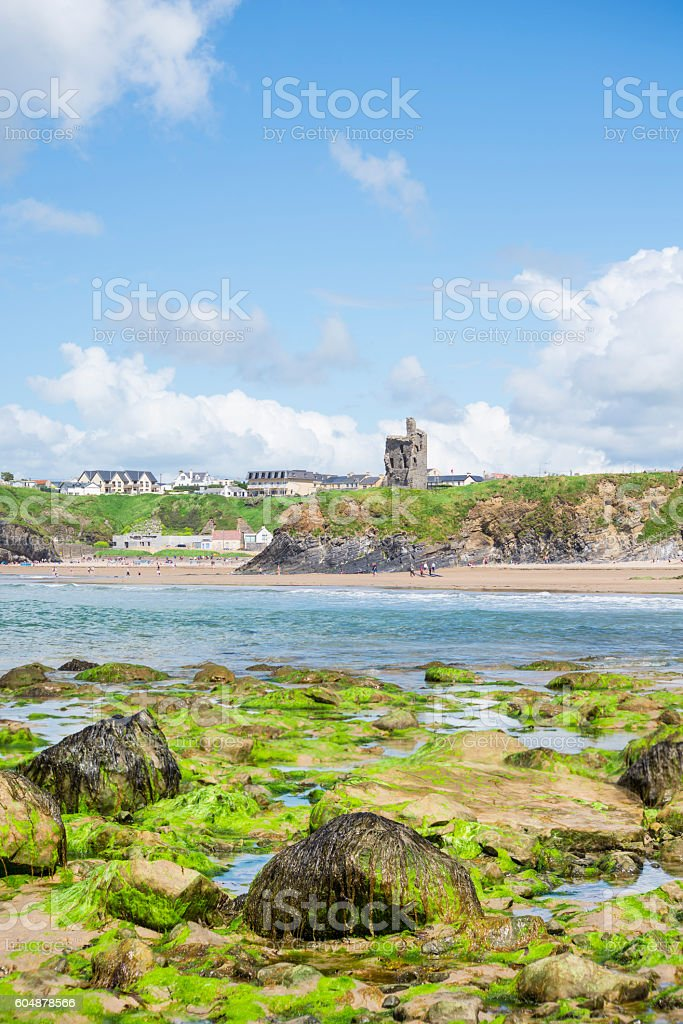 seaweed covered rocks with castle and beach stock photo
