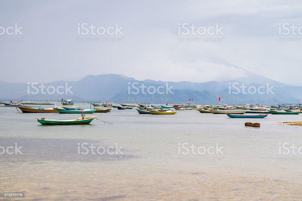 Seaweed Fleet 1 stock photo