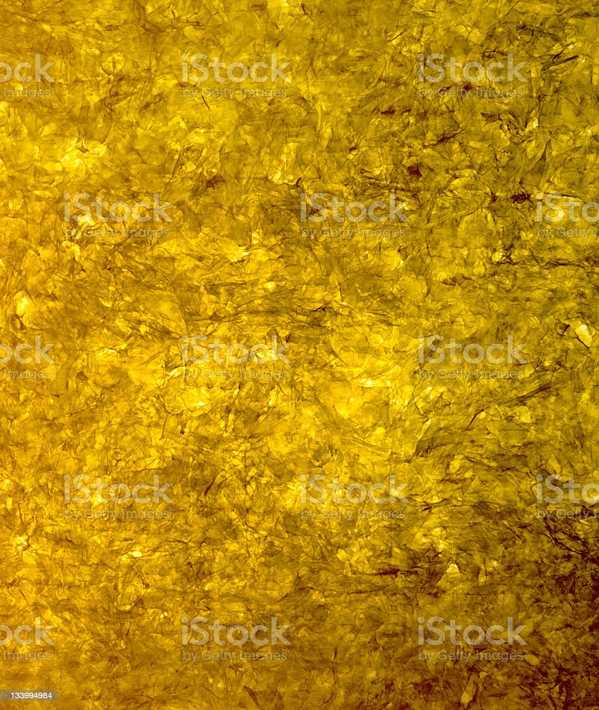 Seaweed Nori royalty-free stock photo