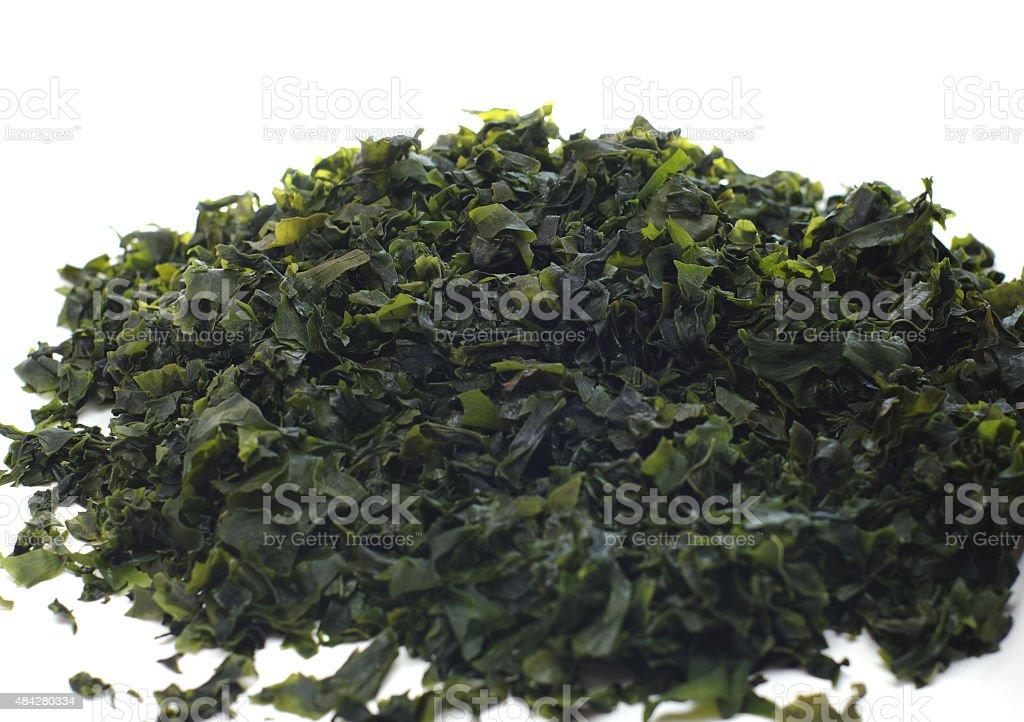 Seaweed wakame (lat. Undaria pinnatifida) stock photo