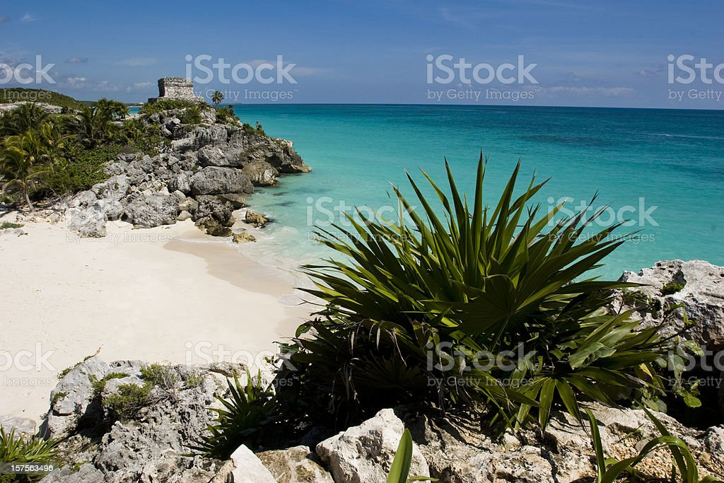 secluded beach in tropics. stock photo