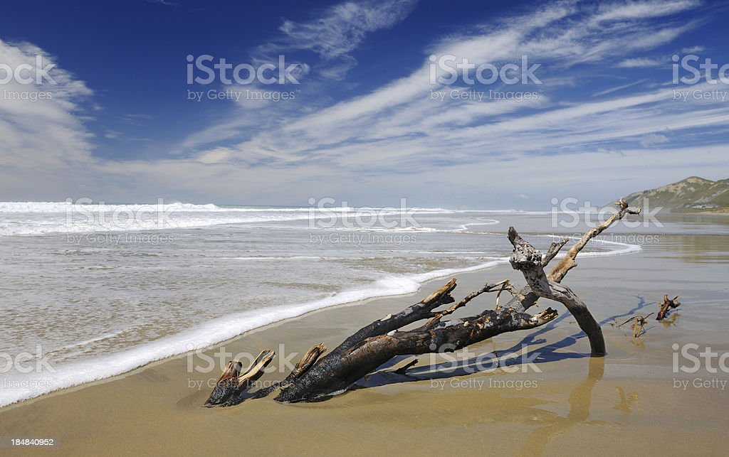 Secluded Beach, New Zealand (XXXL) royalty-free stock photo