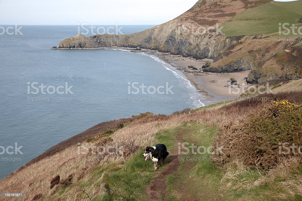 Secluded cove on the Cardiganshire Coast royalty-free stock photo