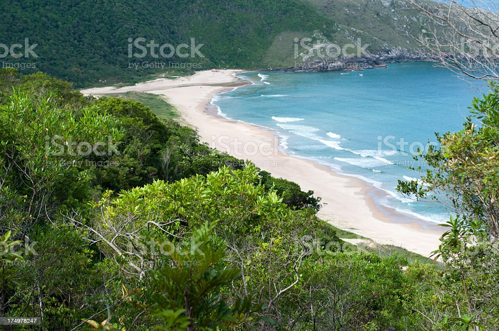 Secluded pristine beach along the Brazilian coast stock photo