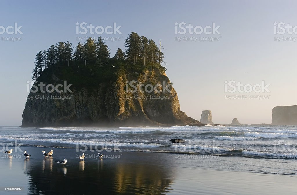 Second beach royalty-free stock photo