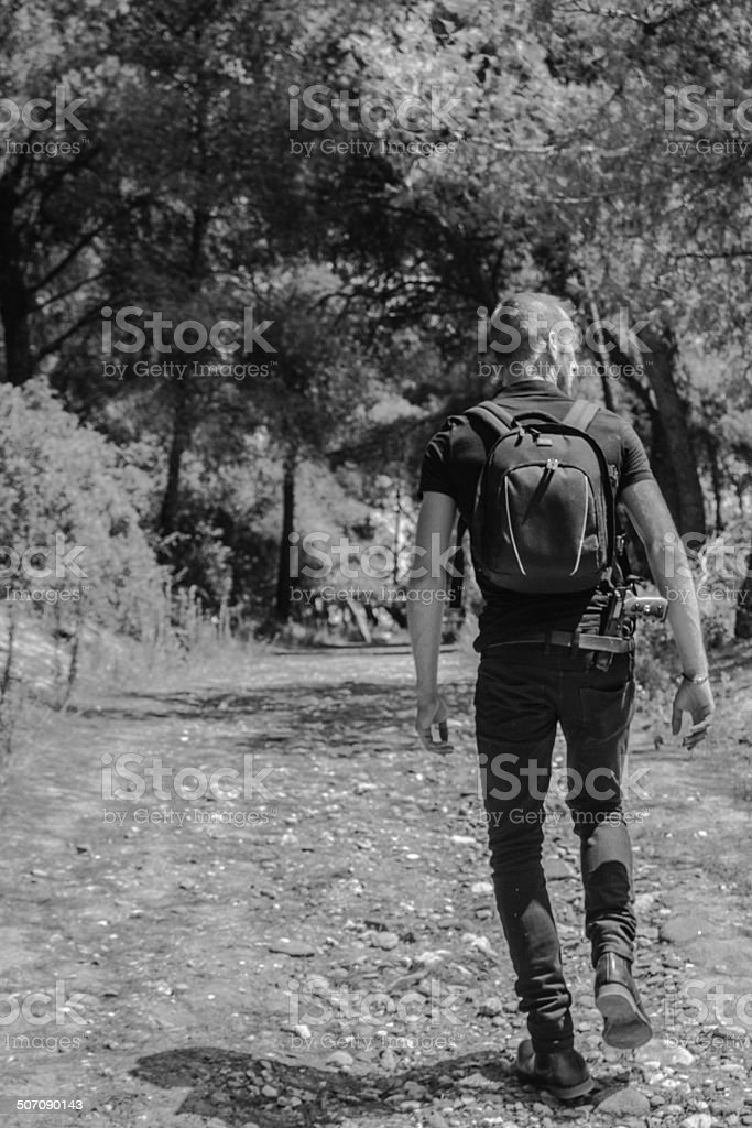Secret Agent Tracking in Forest stock photo
