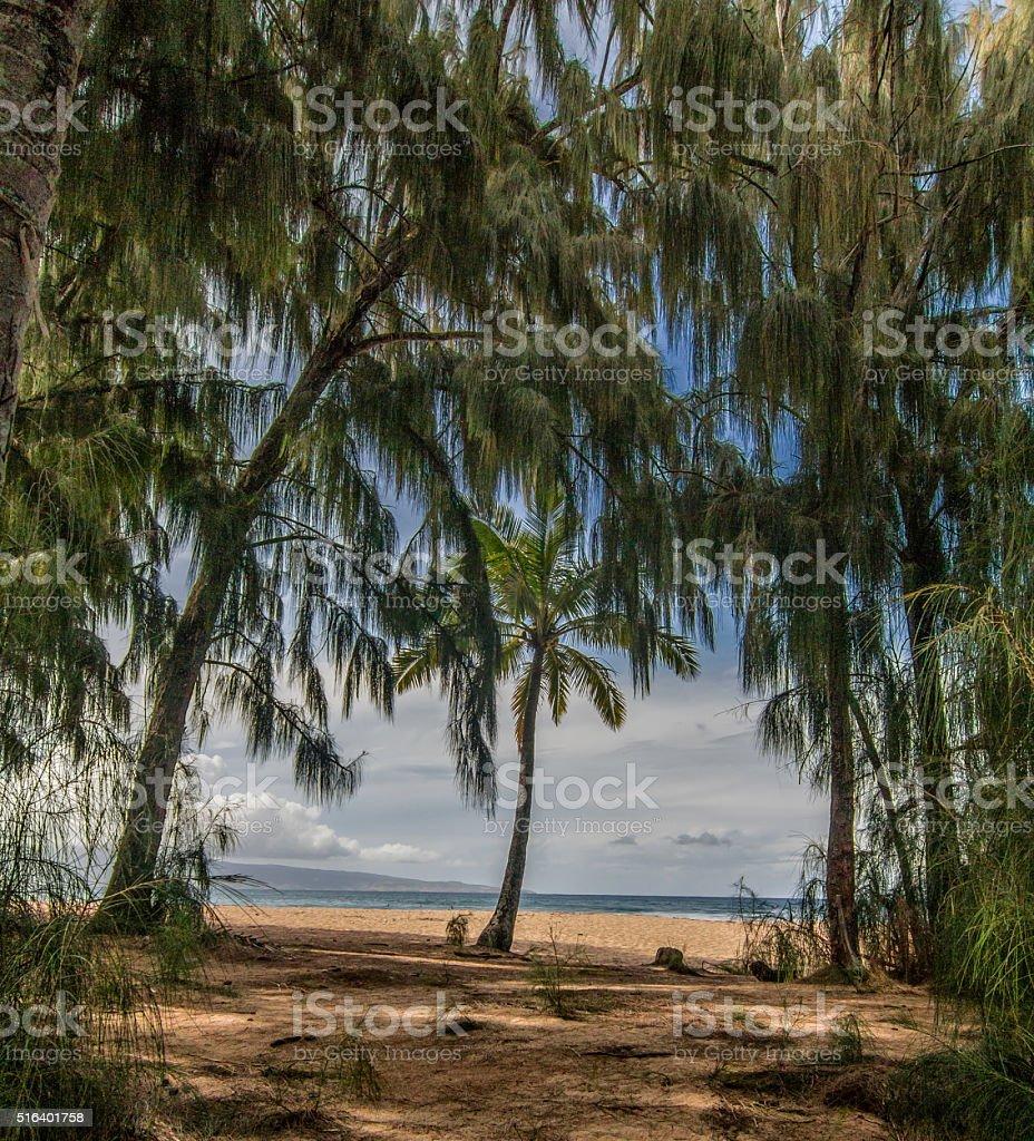 Secret Beach stock photo