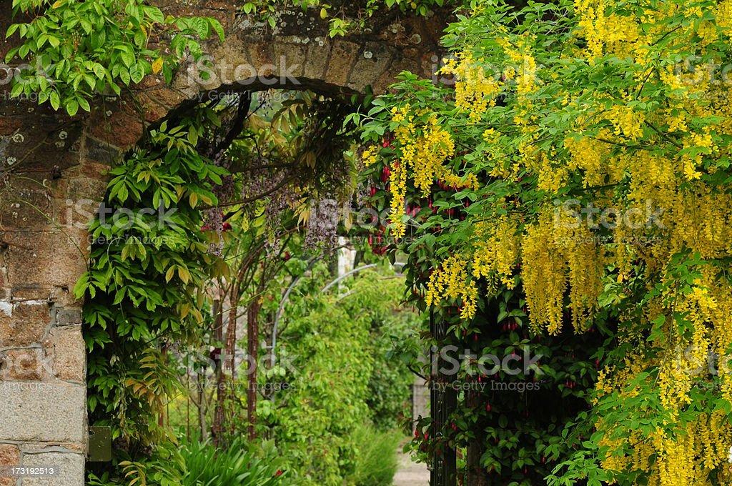 Secret garden, U.K. stock photo