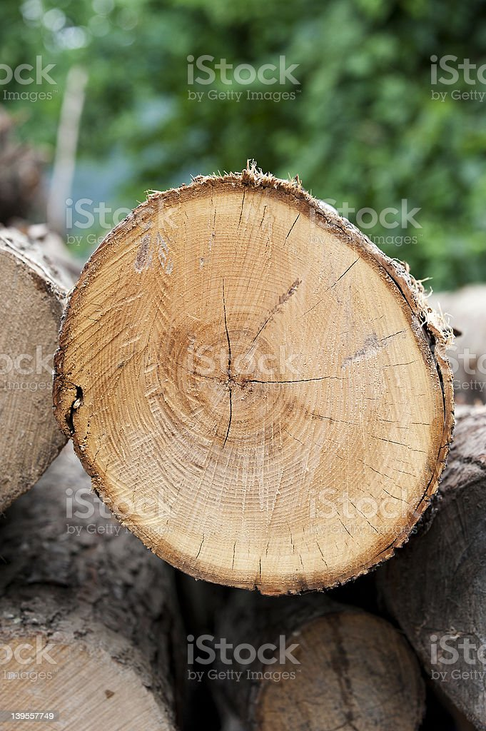 section of fine wood royalty-free stock photo