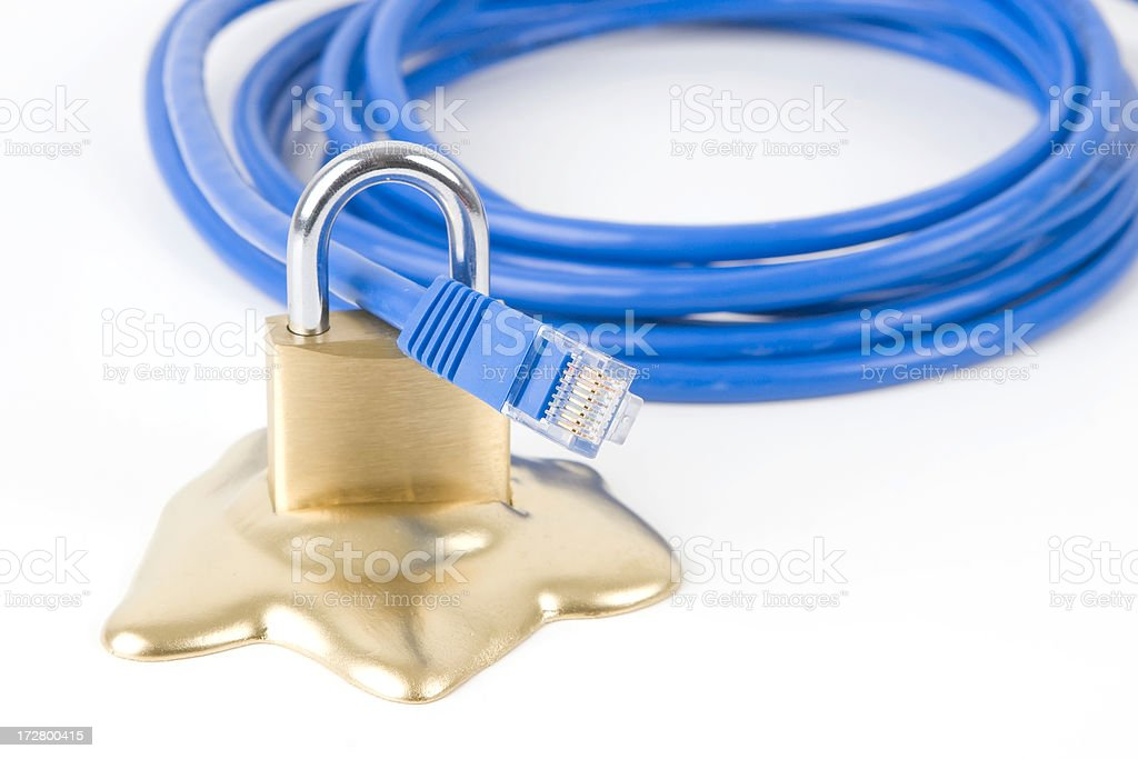 Security 1 royalty-free stock photo