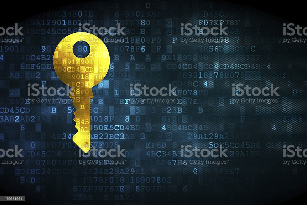 Security concept: Key on digital background stock photo
