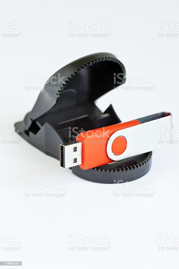 USB Security royalty-free stock photo