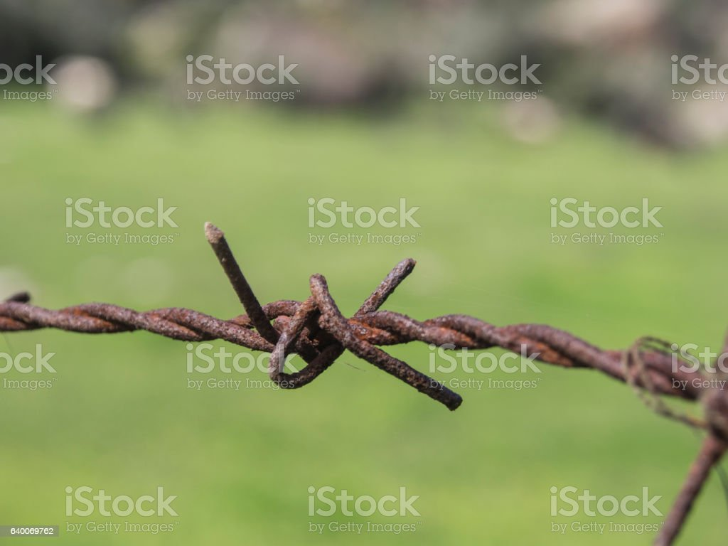 Security Wire stock photo