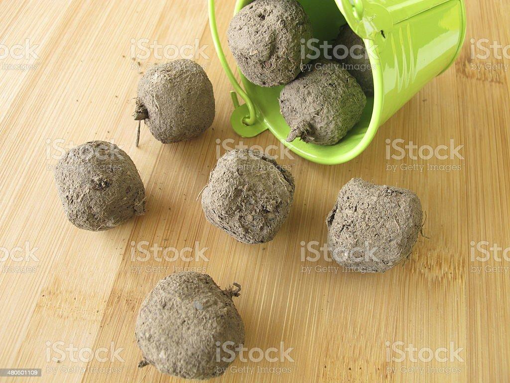 Seed balls stock photo