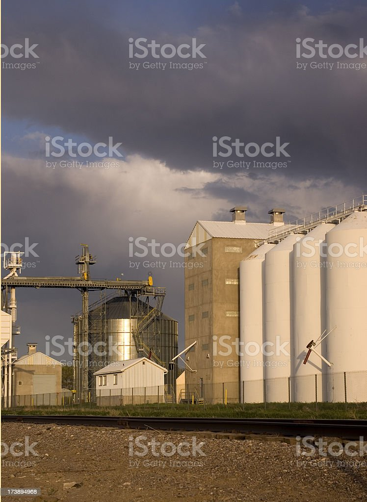 Seed cleaning plant stock photo
