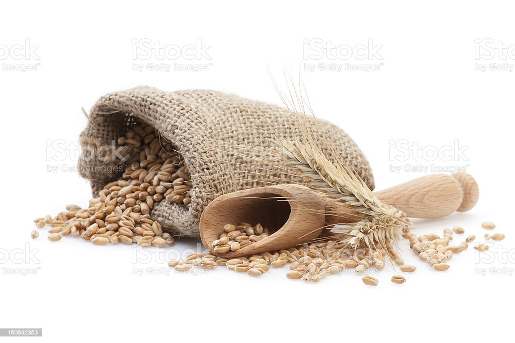 Seed in small burlap sack royalty-free stock photo