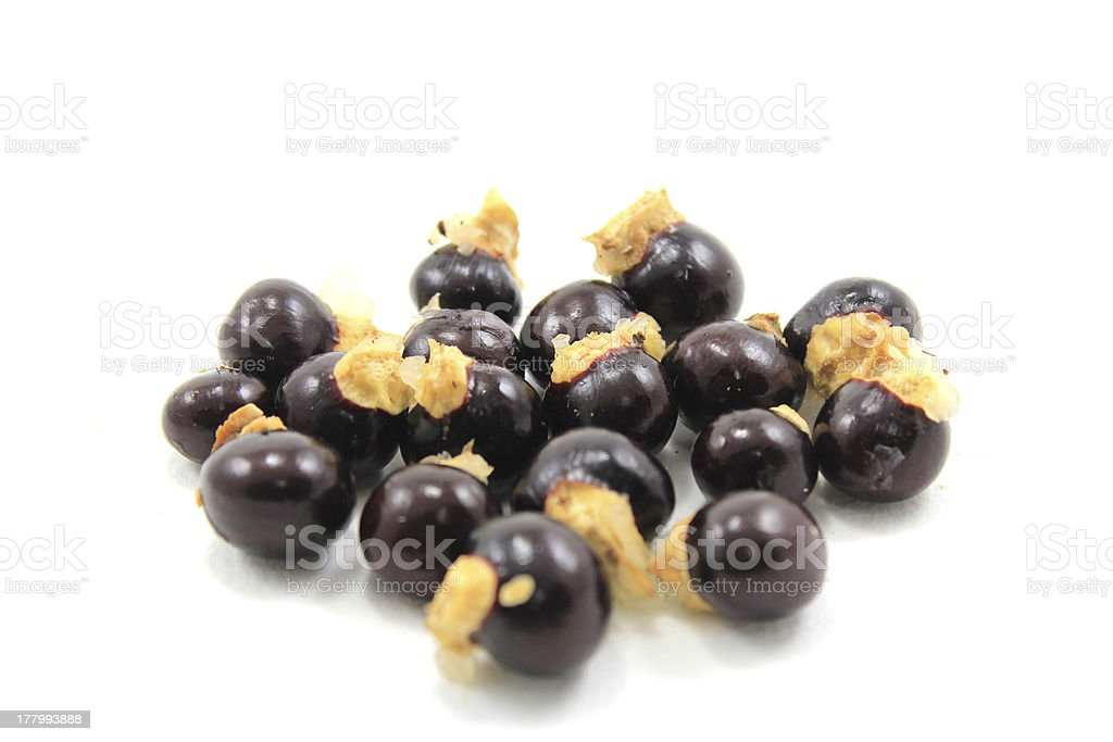 Seed of Longan royalty-free stock photo
