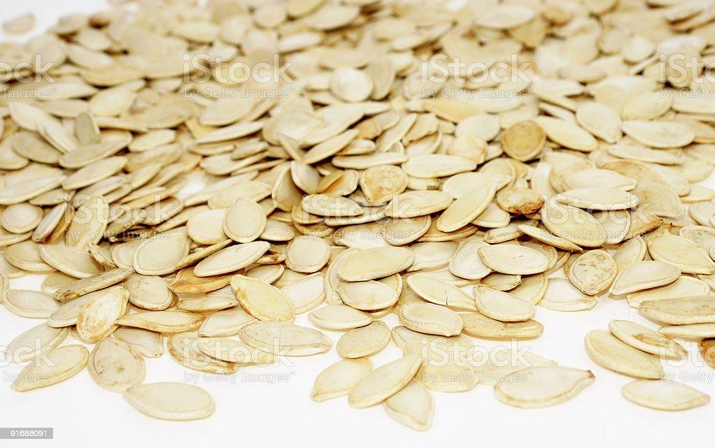 Seed of pumpkin stock photo