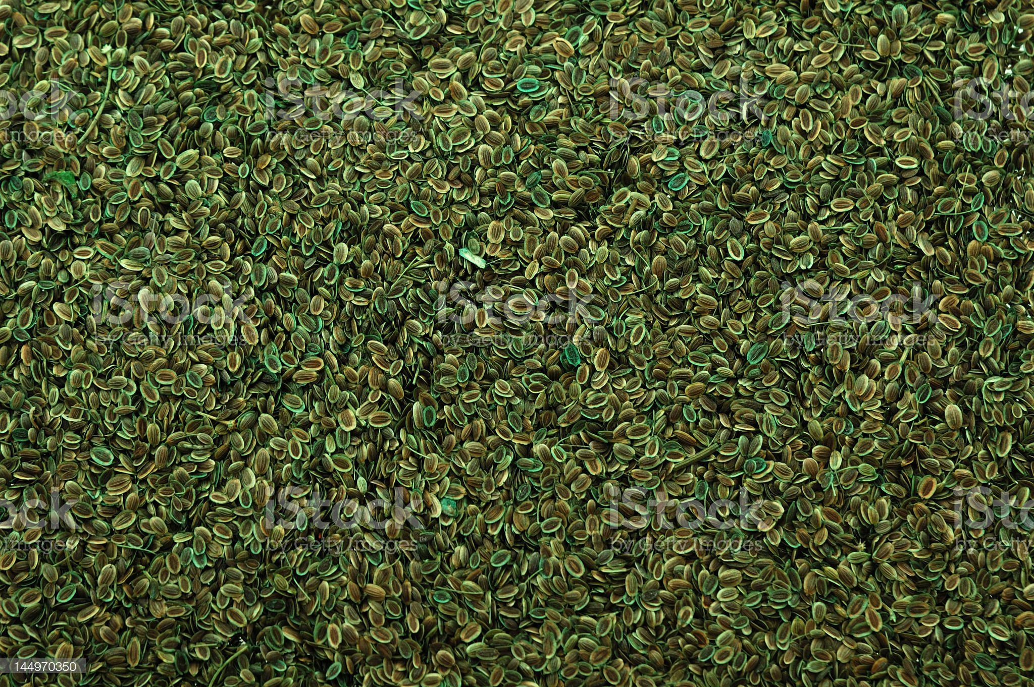 Seed Texture 8 royalty-free stock photo