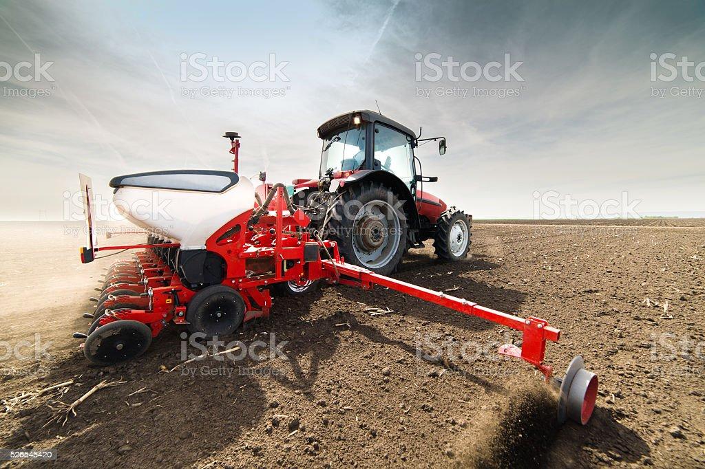 seeding crops at field stock photo