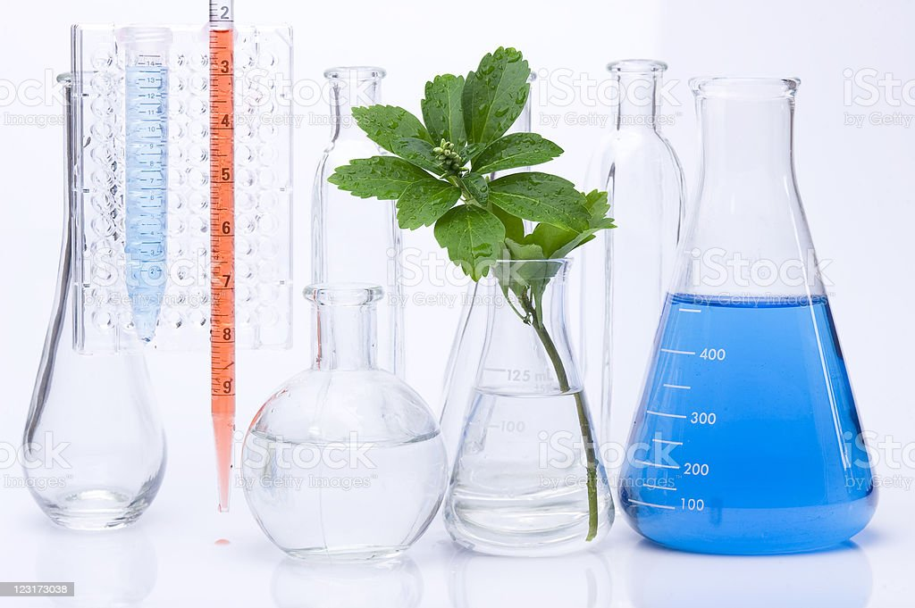Seedling and chemical Test-Tube royalty-free stock photo