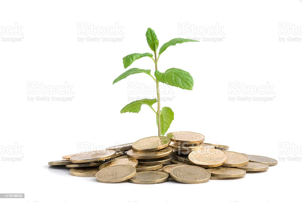 Seedling growing from pile of coins stock photo