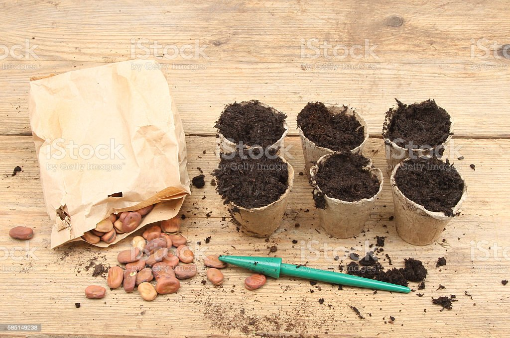 Seeds and plant pots stock photo
