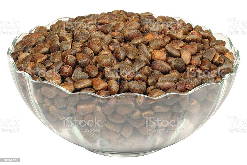 Seeds of Siberian Cedar stock photo