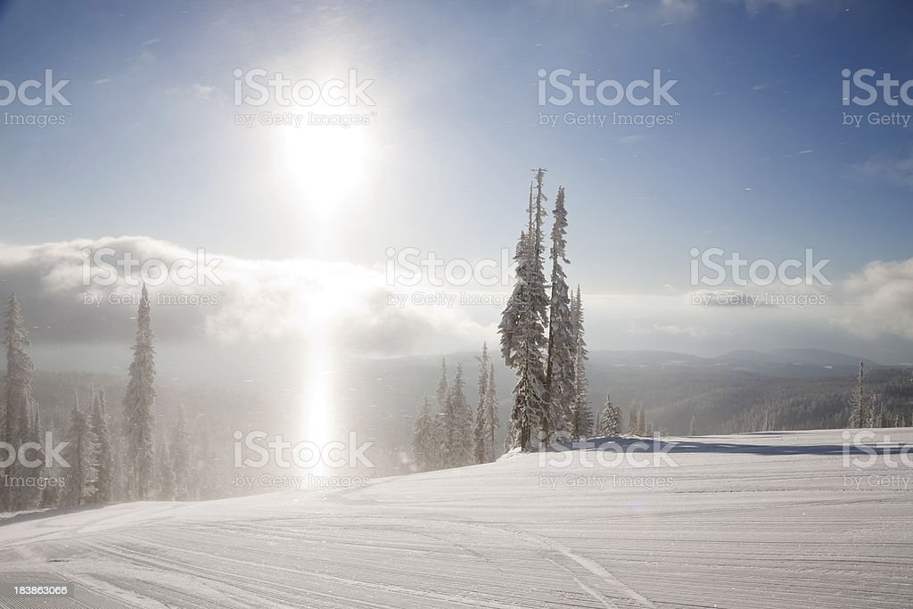 Seeing The Light royalty-free stock photo