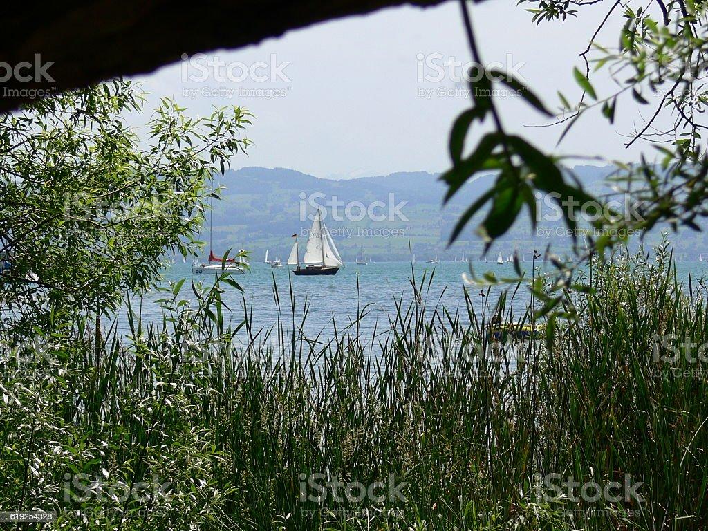 Segelboote auf dem Bodensee stock photo