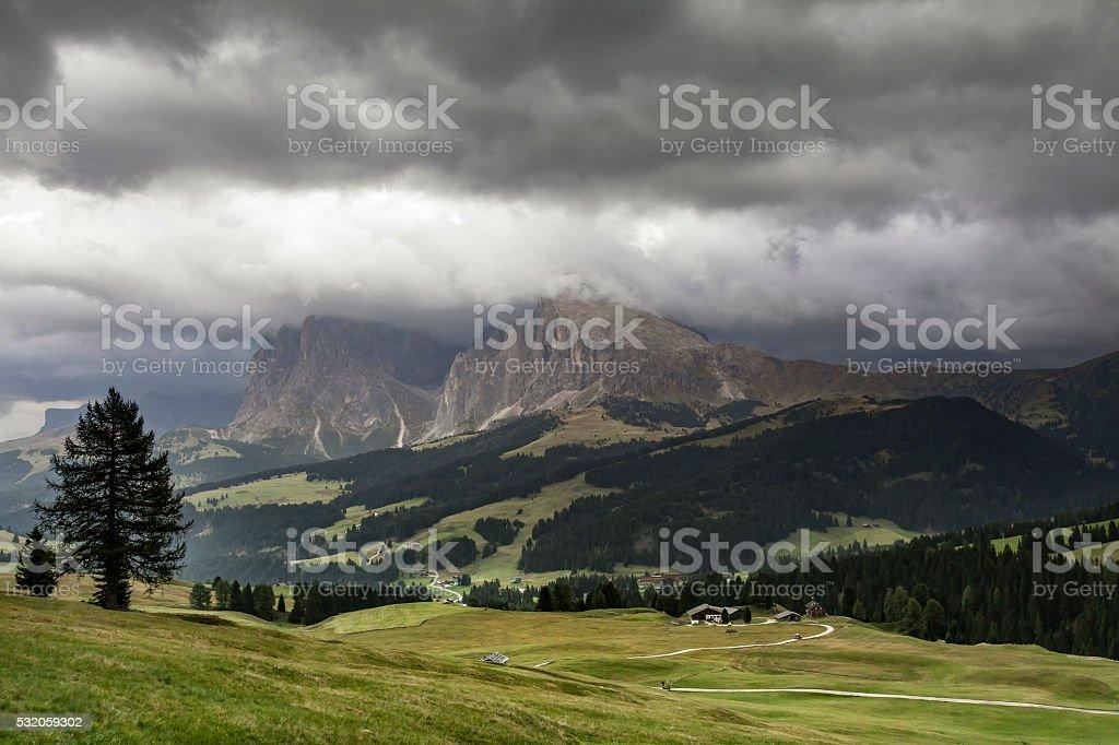 Seiser - Alm mit Plattkofel stock photo