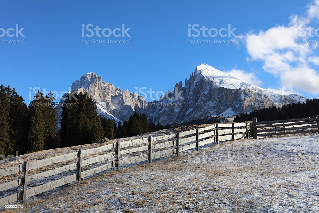 Seiser Alm with Langkofel Group. South Tyrol. Italy stock photo