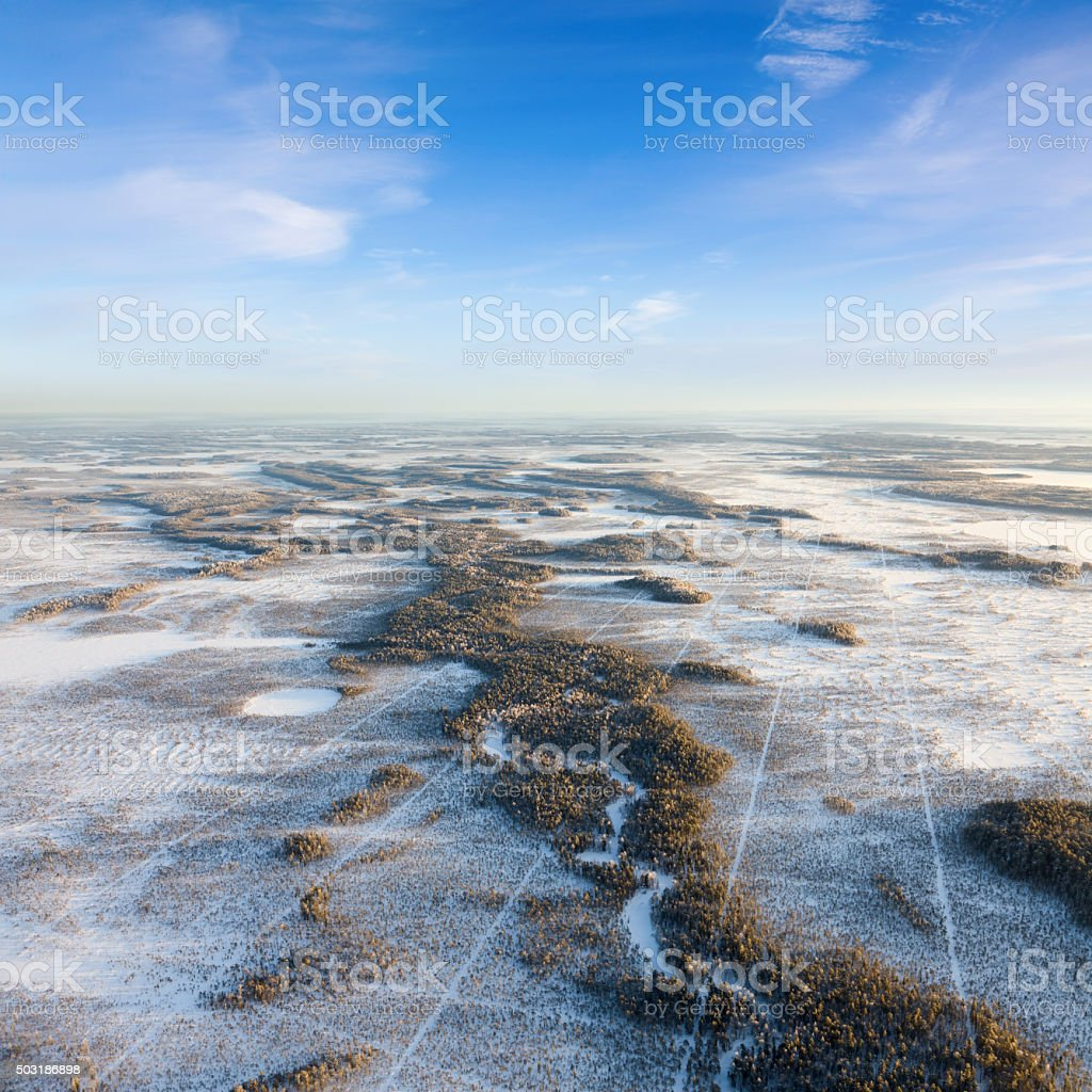 Seismic tracks in winter wooded plain, top view stock photo