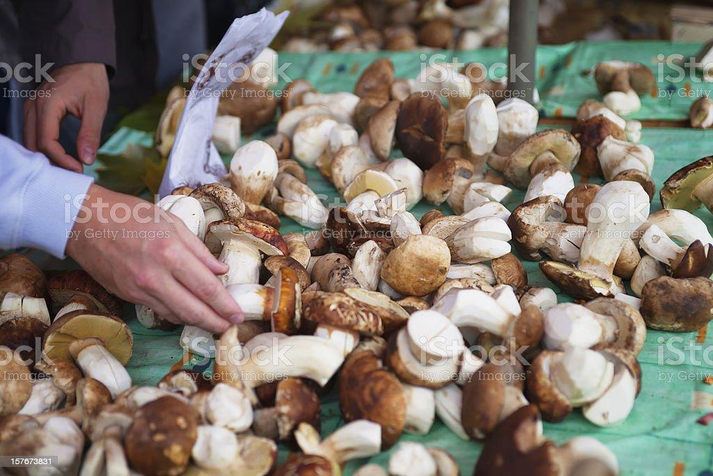 Selecting Fresh Bolets at a farmer's market, vaud, Switzerland stock photo