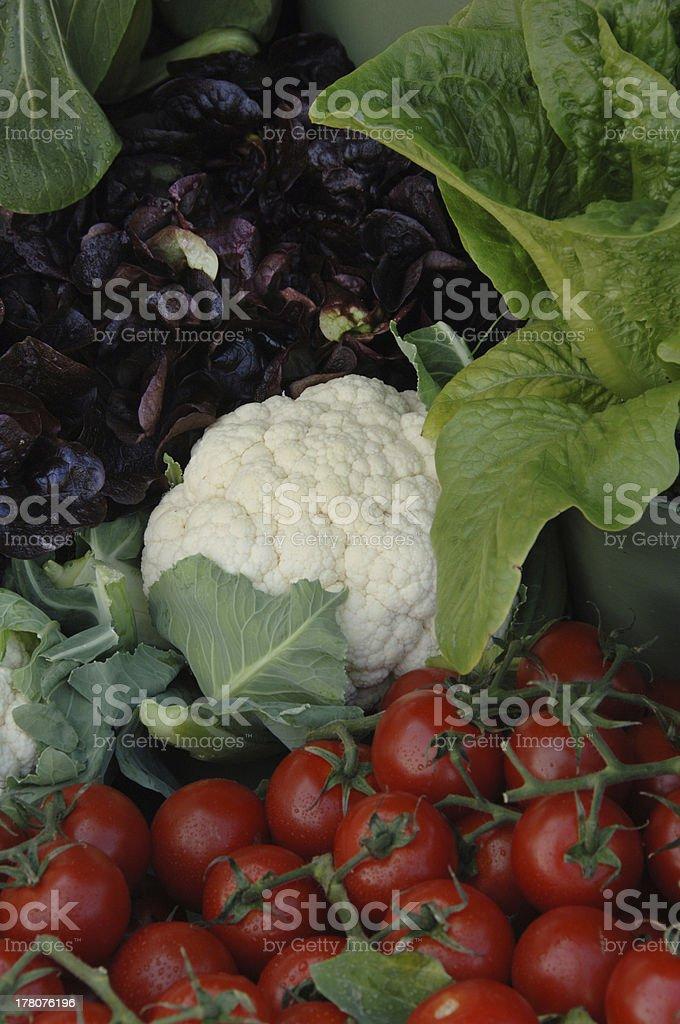 Selection 0f Garden Vegetable royalty-free stock photo