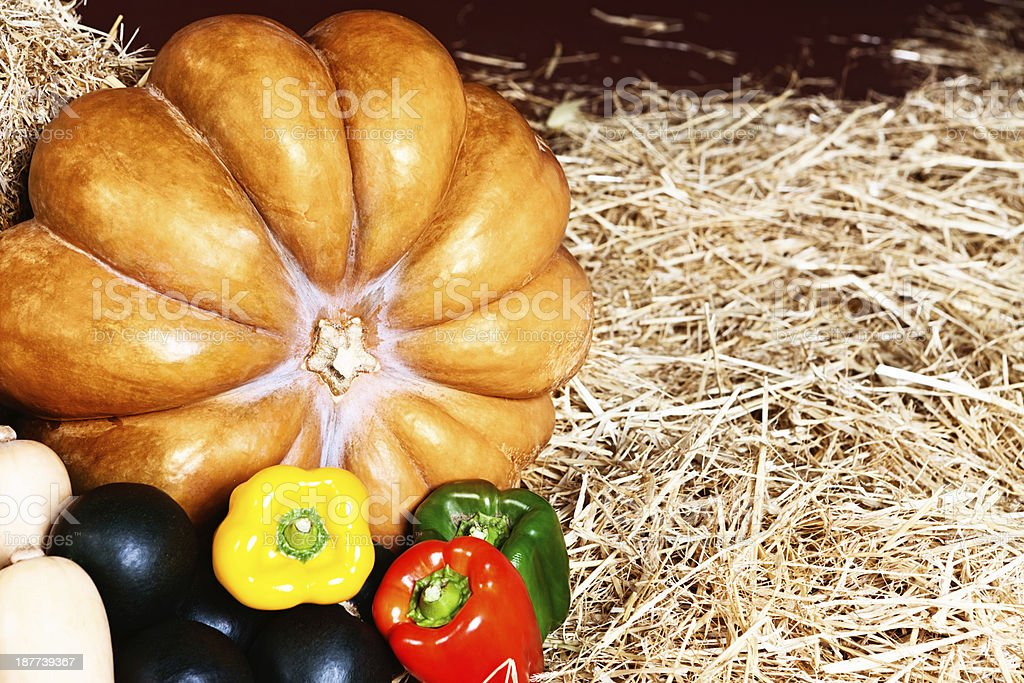Selection of autumn squashes with bell peppers on straw stock photo