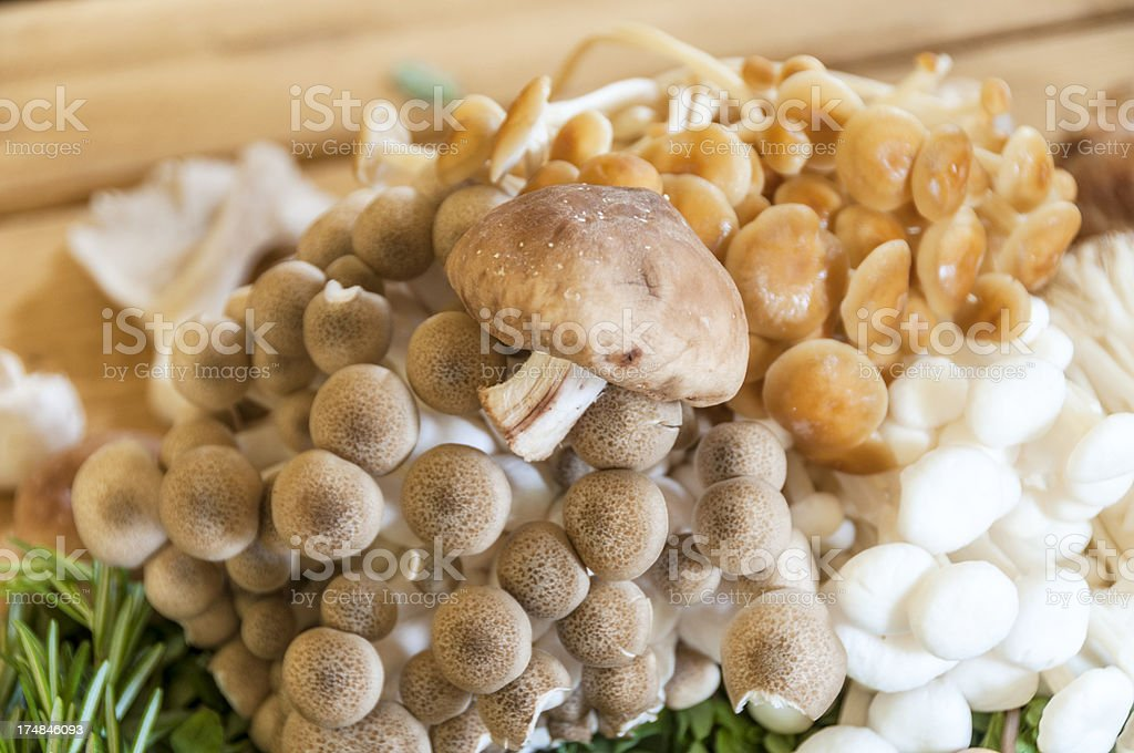 Selection Of Different Mushrooms royalty-free stock photo