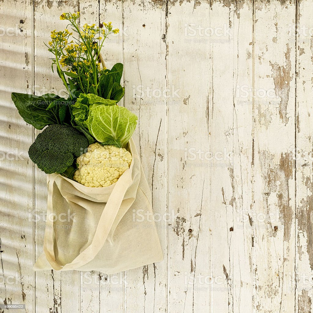 Selection of leafy green vegetables hanging from a rustic wall. stock photo