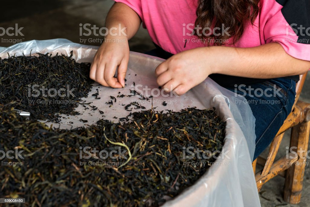 selection of quality tea in the market stock photo